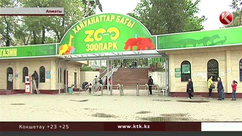 Прокуроры рассказали, почему в Алматинском зоопарке гибнут животные
