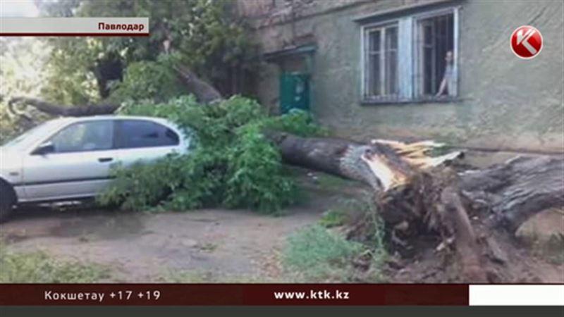 Стихия внезапно атаковала Павлодар