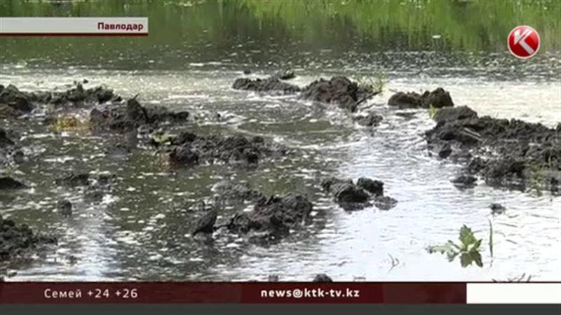Иртыш вышел из берегов, вода заливает павлодарский пригород