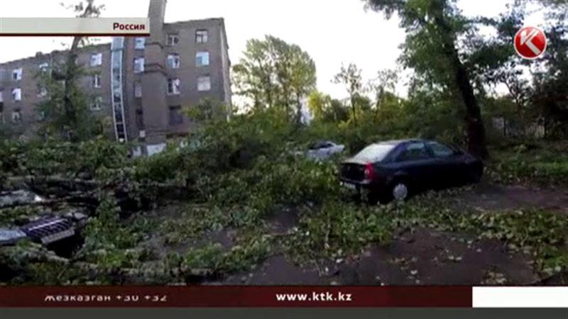 Погода мечет молнии: в Москве во время урагана погибли люди