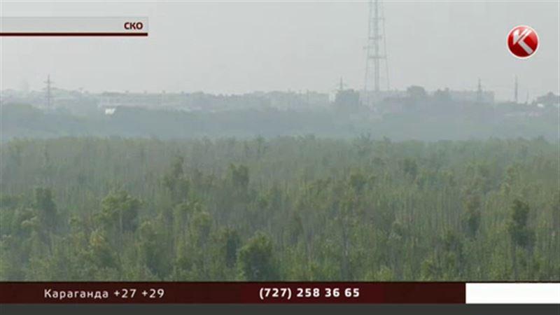 Северный Казахстан заволокло плотным туманом