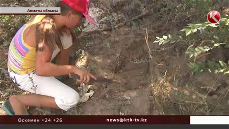 Алматы облысында ойын балалары топыраққа көмулі жатқан жерінен өлі нәрестені қазып алған