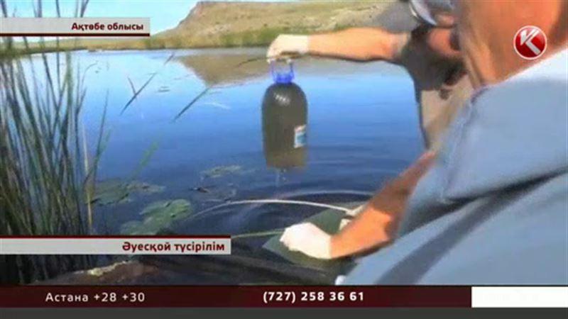 Ресейдің Орынбор облысында Ор өзеніне тұрғындардың шомылуына тыйым салынды