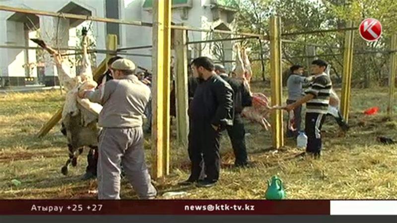 Забивать скот на Курбан айт во дворах строго запретили