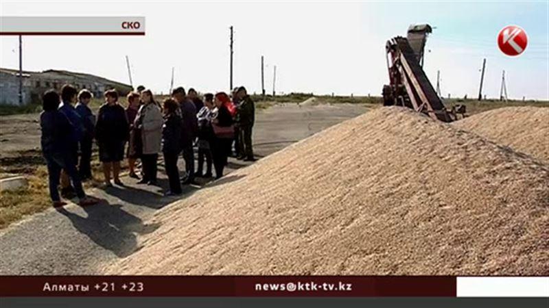 Североказахстанские крестьяне борются за урожай не с природой, а с хозяином земли