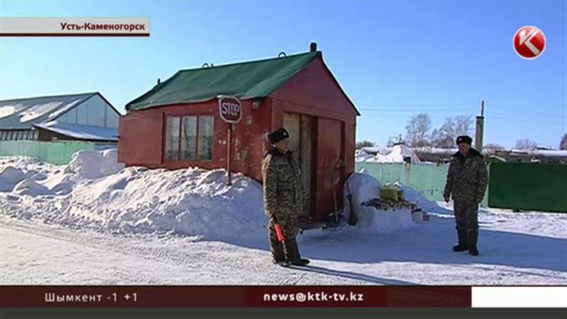 В Усть-Каменогорске елки взяли под охрану