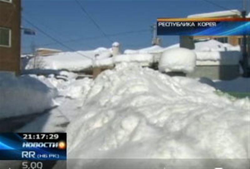 Снегопады парализовали Южную Корею
