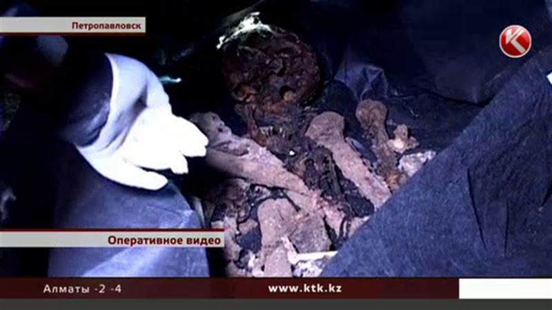 В подвале петропавловской девятиэтажки нашли человеческий скелет