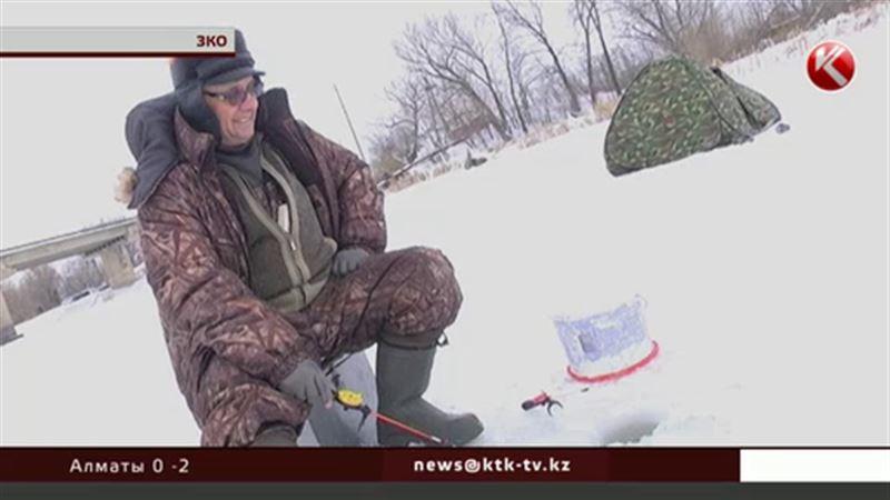 В Западно-Казахстанской области рыба нуждается в кислородных коктейлях