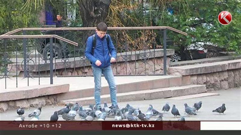 Весна в Казахстан все же придет