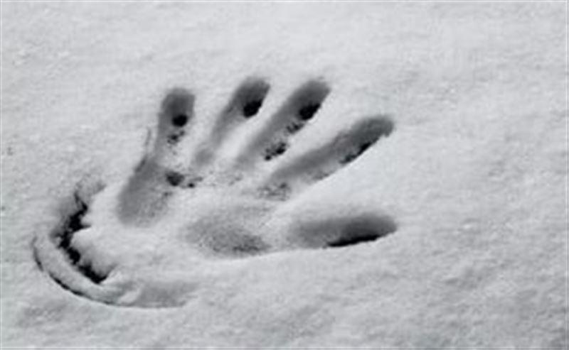 Пенсионер насмерть замерз на улице в Акмолинской области