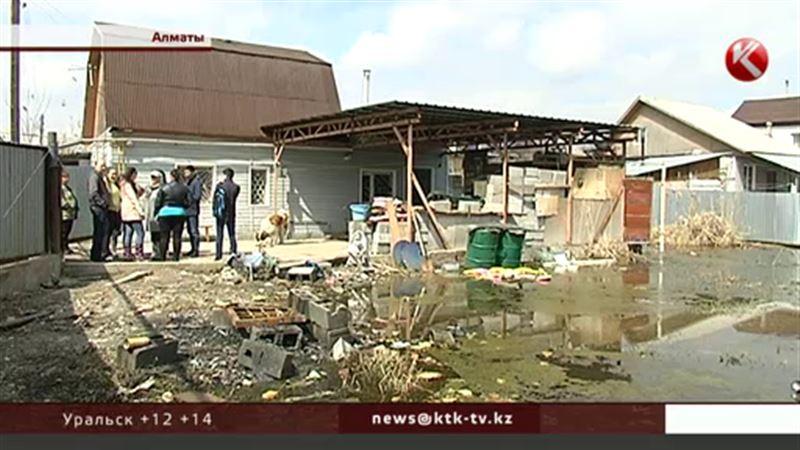 Дачный массив в Алматинской области затоплен поднявшимися грунтовыми водами