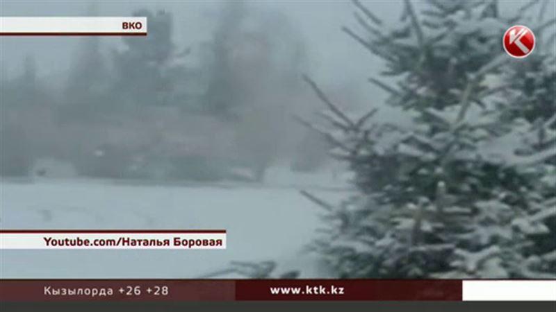 Несколько городов Восточного Казахстана засыпало снегом