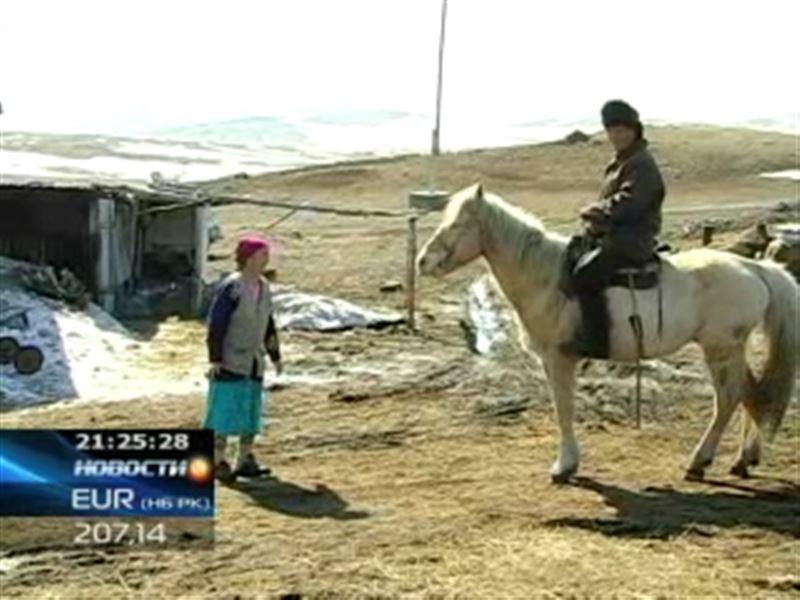 Чабаны, живущие на отдаленных зимовках Восточного Казахстана, готовятся к выборам