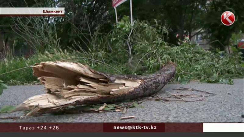 В Южно-Казахстанской области устраняют последствия сильнейшего урагана