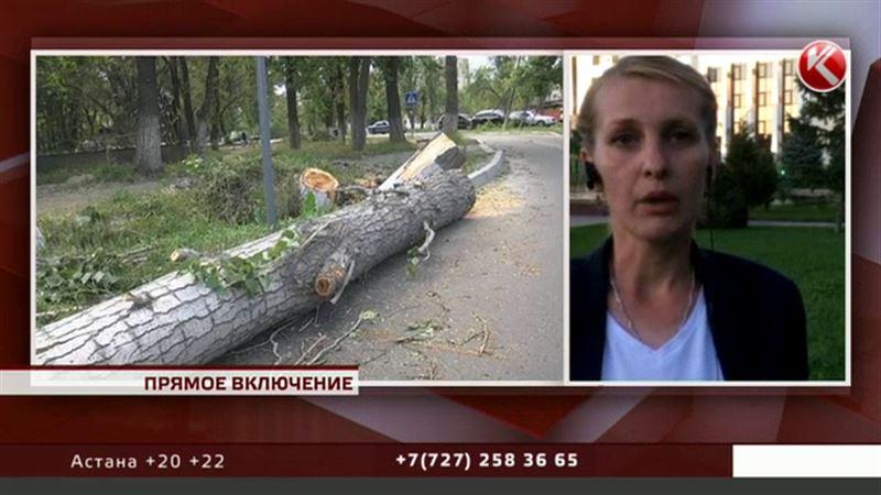 Таразцы не получали смс-сообщений накануне урагана