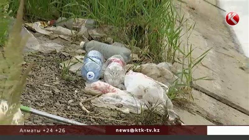 За неделю со дна и побережья столичных рек собрали 10 тонн мусора