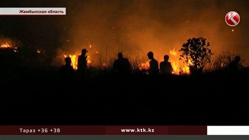 Пожар в Жамбылской области охватил сотни гектаров
