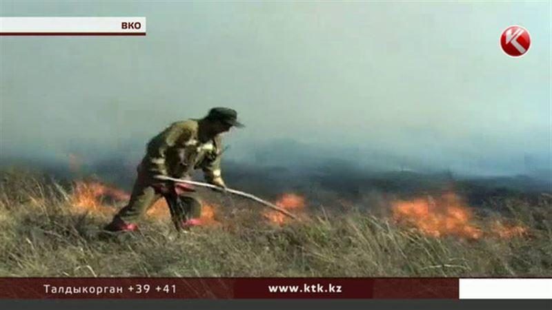 Грозы «поджигают» леса в Восточном Казахстане