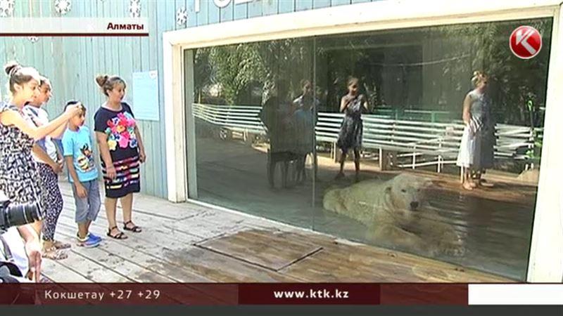 В алматинском зоопарке животных прячут за бронированным стеклом