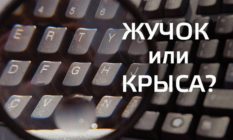 Жучки-инфоеды: казахстанцев стали больше прослушивать