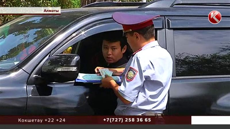 В Алматы начался сезон отлова пешеходов-«сайгаков»