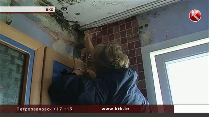 Жители восточноказахстанского села просят избавить их от квартир