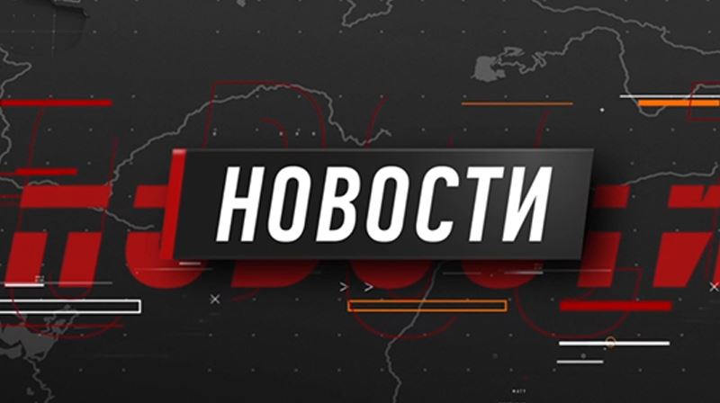 Бык-рекордсмен, символ наступающего года, живёт в Северном Казахстане