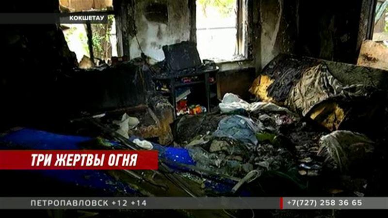 В Кокшетау при пожаре погибли женщина и двое детей