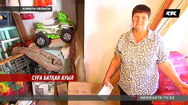 Алматы облысында жерасты сулары көтеріліп, тұтас бір ауылды басып жатыр