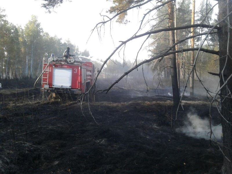 Сельские жители из-за лесного пожара в Костанайской области были эвакуированы