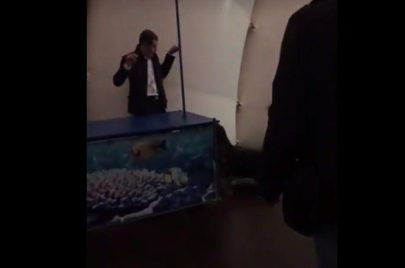 ВИДЕО: морской котик задержал злоумышленника