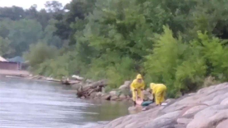 ШОК: На пляже США обнаружено тело русалки