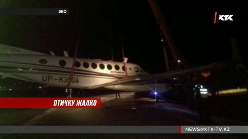 Стая птиц пробила дыру в казахстанском самолете