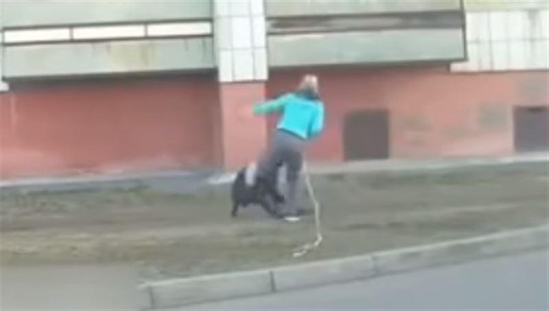 Жительница Караганды жестоко избила свою собаку