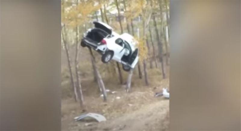 В Китае автомобиль повис на дереве после ДТП
