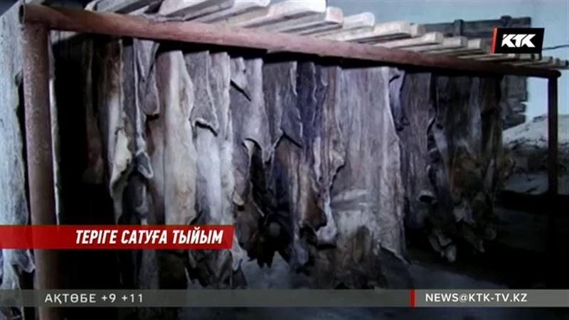 Еліміздің кәсіпкерлері теріні шетелге шығаруға тыйым салуды сұрап отыр