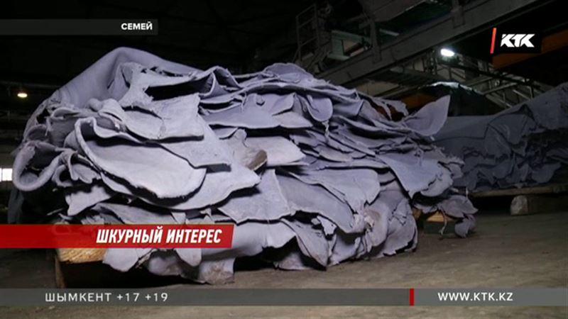 Дерут шкуры: казахстанские кожевенные заводы остались без сырья