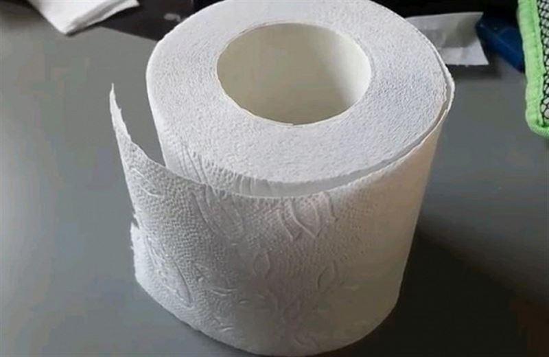 В Голландии из использованной туалетной бумаги построят дороги