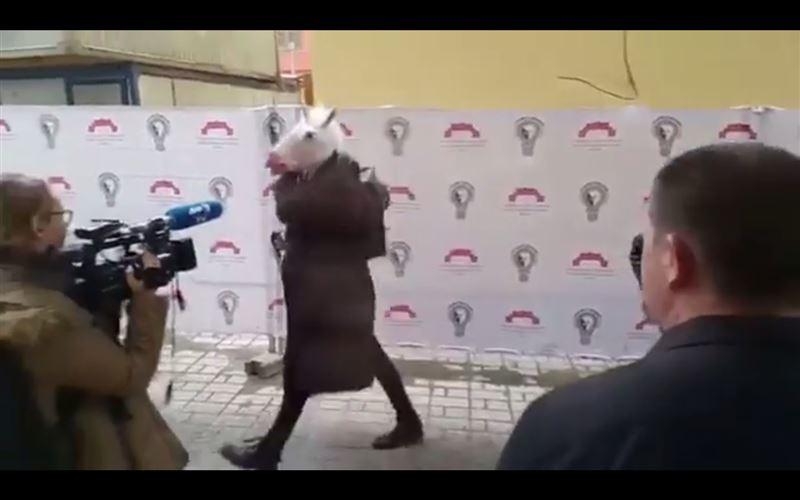 """Пресс-конференцию Собчак пытался сорвать """"единорог"""""""