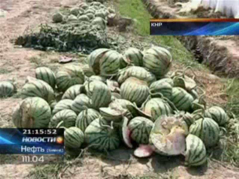 В Китае взрываются арбузы, напичканные удобрениями