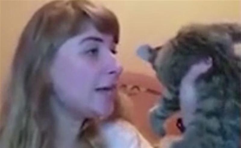 Не для слабонервных: Живодерка на камеру избила и швырнула котенка в стену