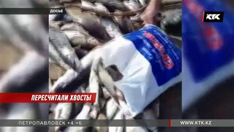 Больше семи центнеров рыбы из Сарысу утилизировали