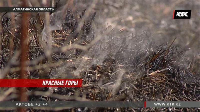 Под Алматы двое суток горели 10 гектаров пастбищ