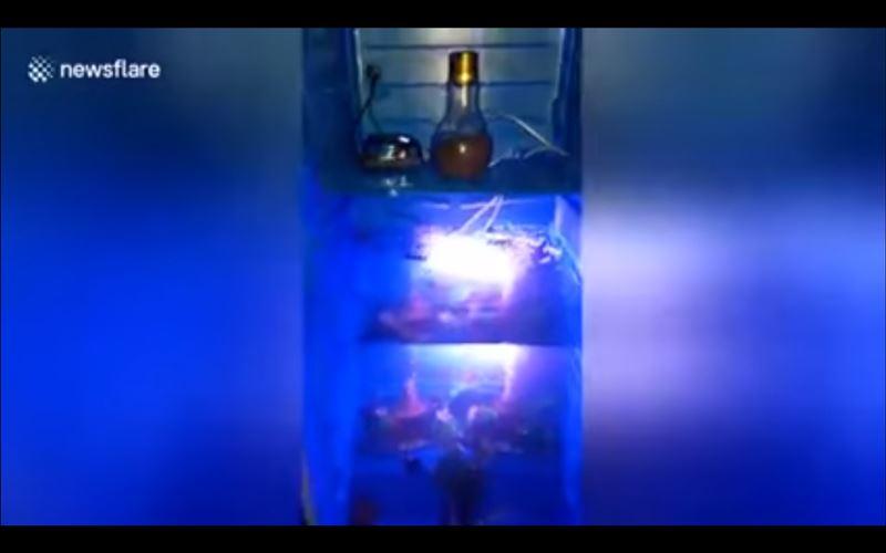 Из холодильника пранкер сделал аквариум для рыб