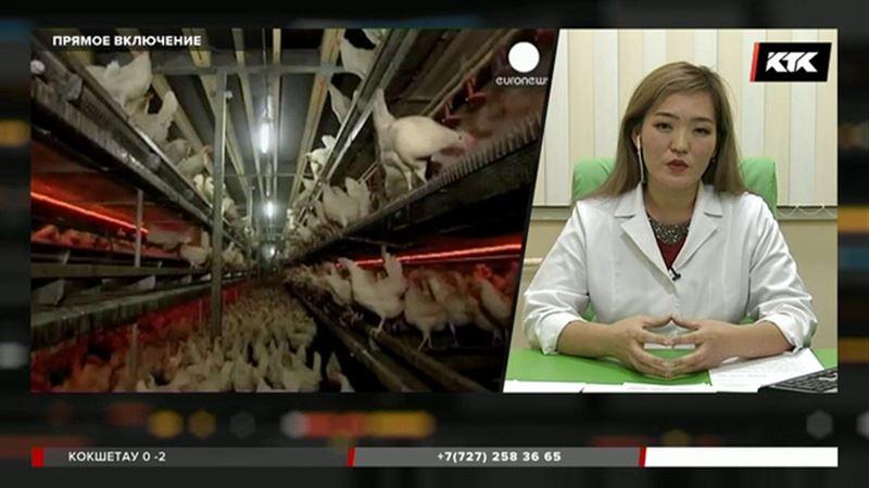 Из-за антибиотиков в мясе возникает привыкание к лекарствам у людей