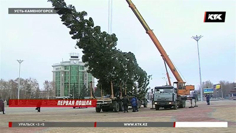 Новогоднюю елку уже установили в Усть-Каменогорске