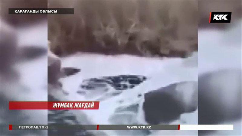 Қарағанды облысында балық қырылған Сарысудағы суға жасалған сараптама қорытындысы шықты