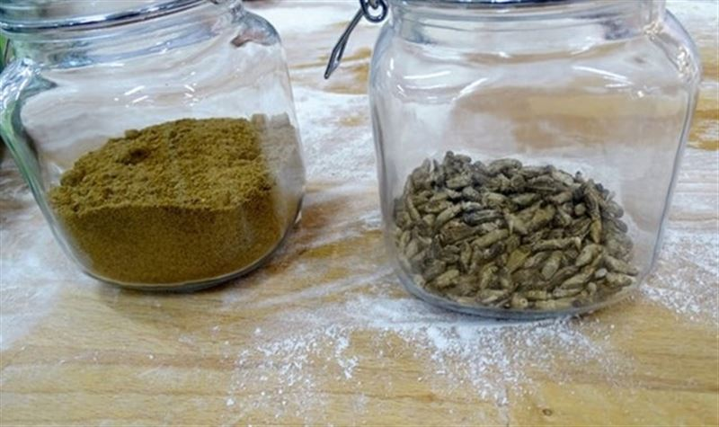 В Финляндии начнут выпекать хлеб из насекомых