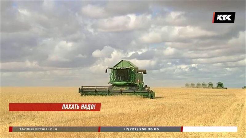 Казахстанцы смогут пользоваться сельхозугодиями бесплатно